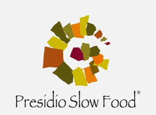 slowfoof_nosfondo